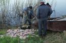 Эффективность борьбы с браконьерством в России значительно возрастет