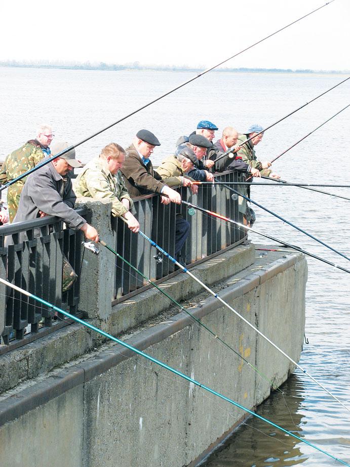 штрафы за нарушение ловли рыбы