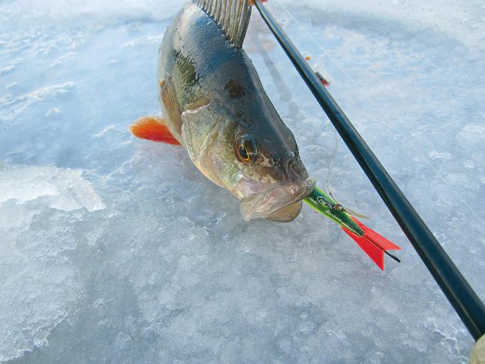 покажи зимнюю рыбалку