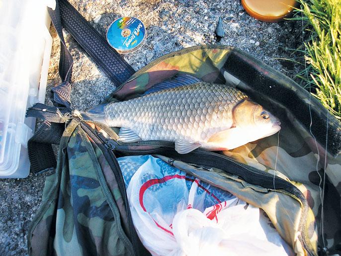 ловим на горьковском водохранилище