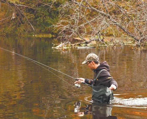 забродники для рыбалки в красноярске