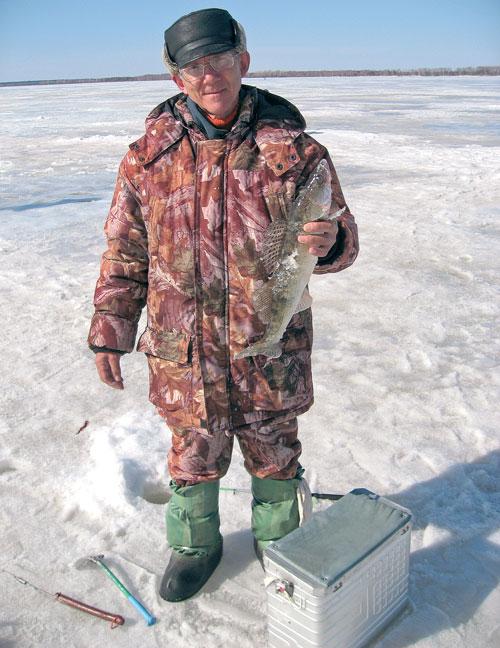 Как сделать поставушку на судака зимой