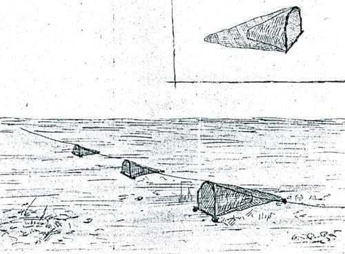 браконьерские методы ловли рыбы