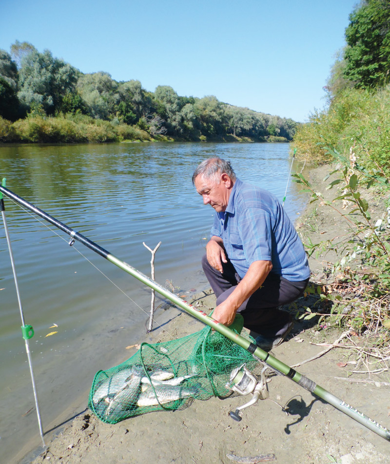 Рыбалка клев прогноз волгоград