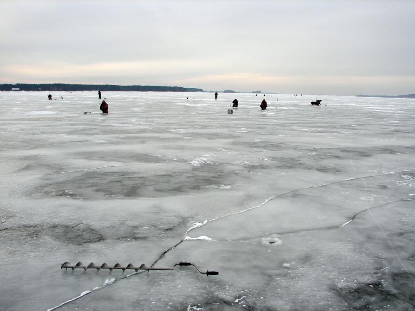 рыбалка шомохта