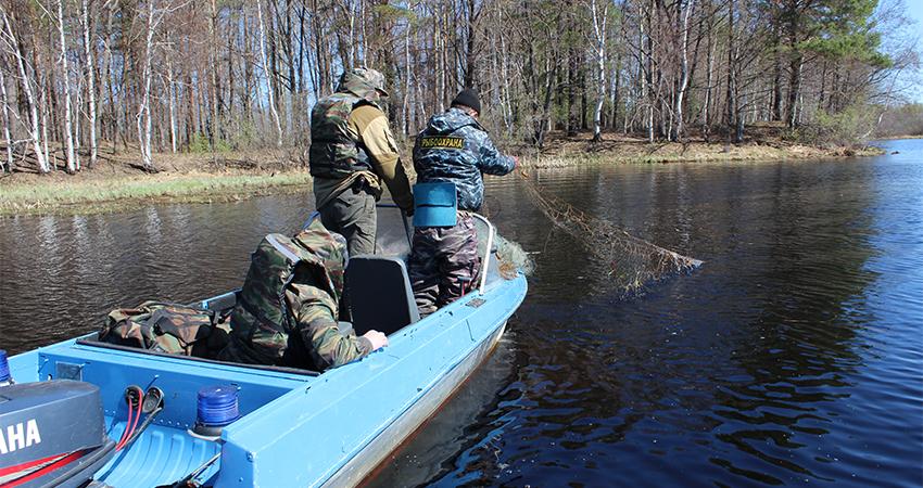 запреты на рыбалку в нижегородской области
