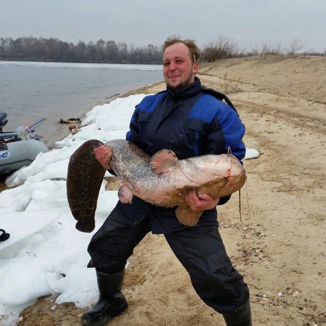 как ловить рыбу в городе