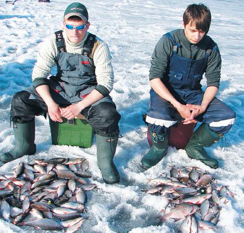 ловля сороги на горьковском море