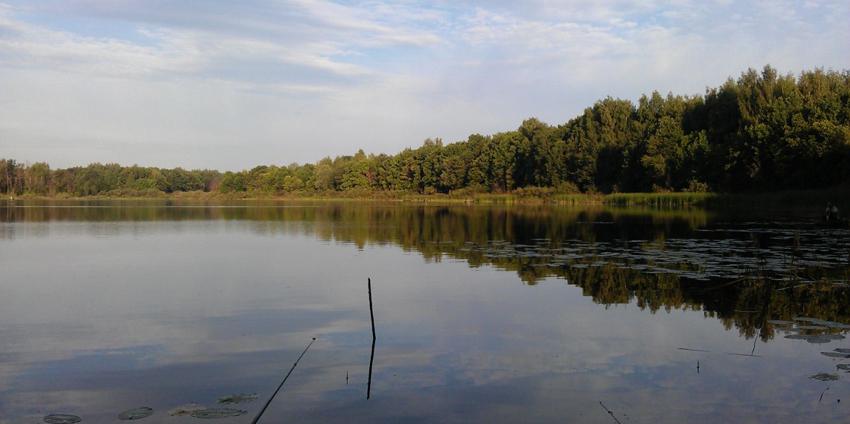 рыболовные места в борском районе