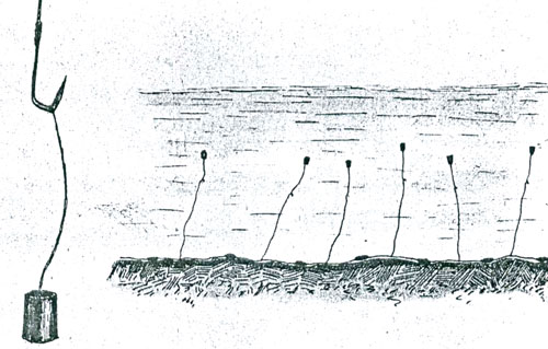 удочка для ловли стерляди