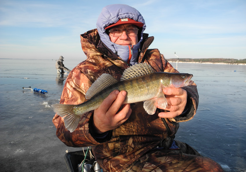 Горьковский район рыбалка