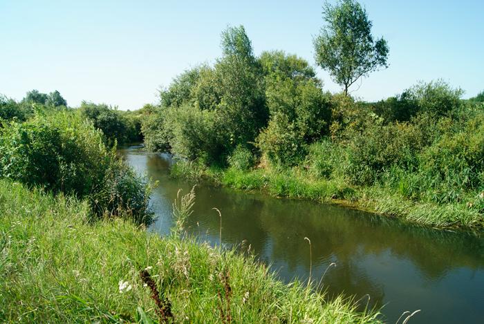 Рыболовные места на ветлуге нижегородской области