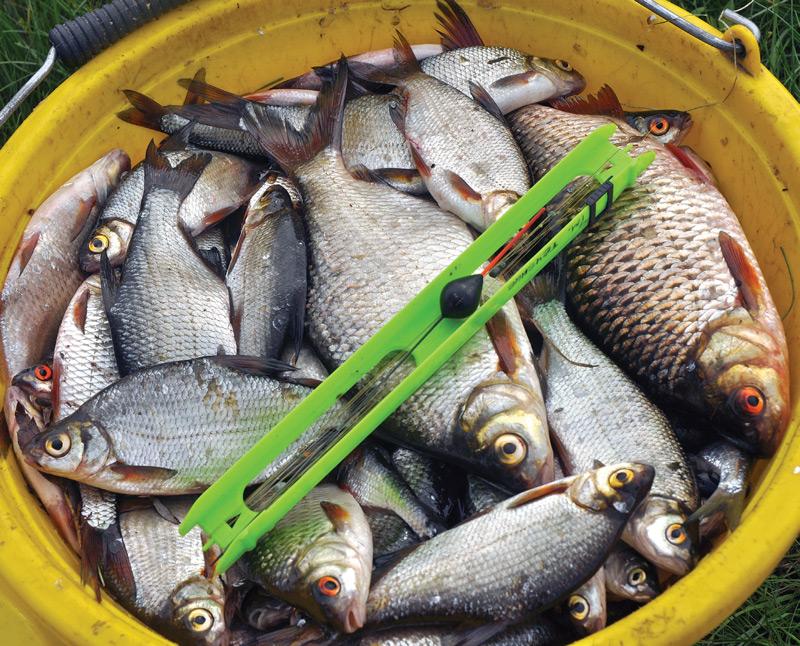 ловля речной рыбы снасти