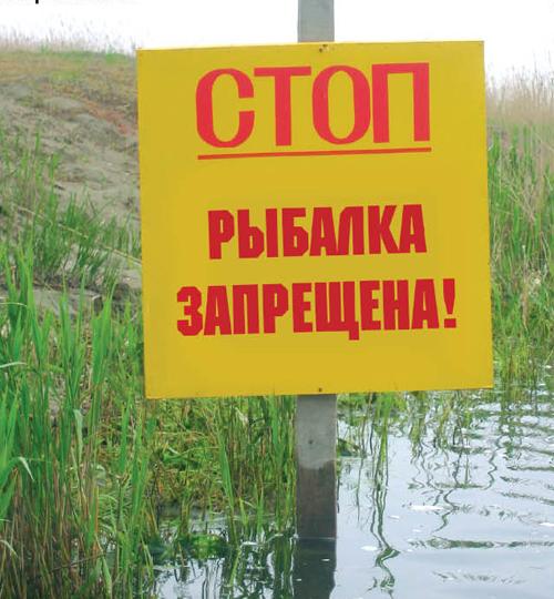 запрет на рыбалку на волге
